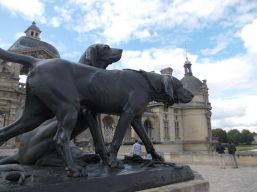 ChantillyDogs