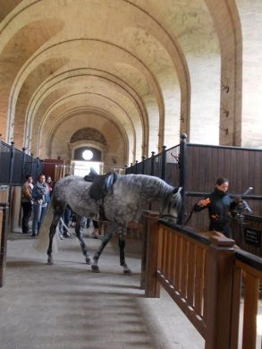 ChantillyStable