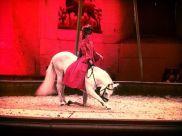 Dancing horses in Chantilly