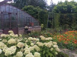 greenhouse2