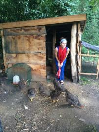 Janet looking lovely among the hens