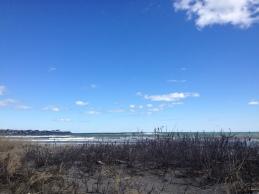 A Newport beach